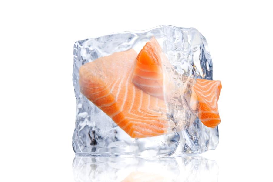 氷とサーモン