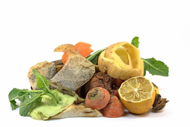 野菜くずやティーバッグなどの生ごみ