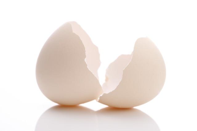 卵の殻だけ