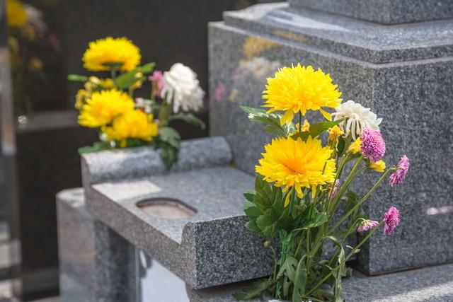 お墓とお供え物の花