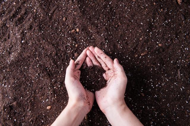肥料を撒いた土