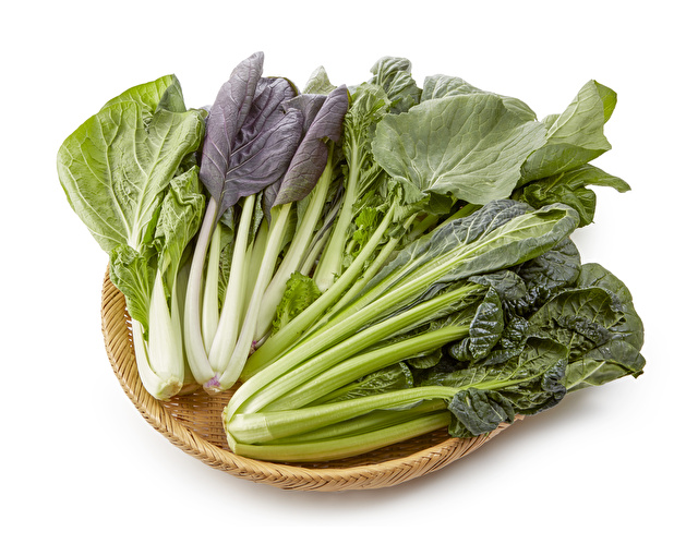 しろ菜、紫小松菜、大和まな、ちぢれ小松菜
