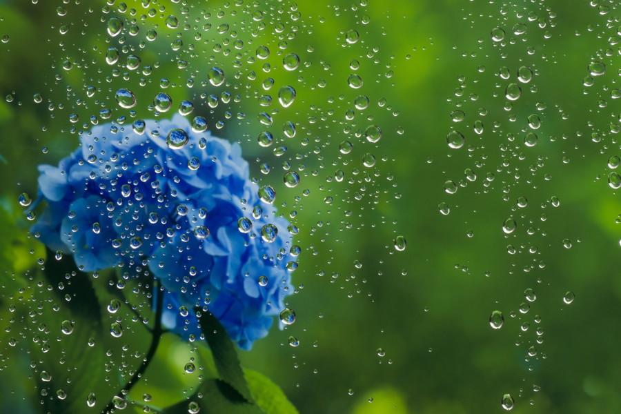 梅雨のトラブルに要注意