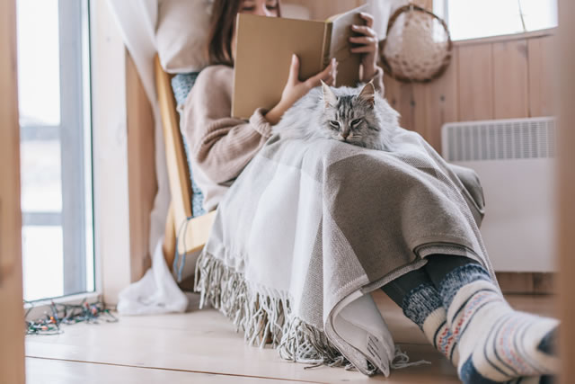 Girl relaxing with cat in cabin