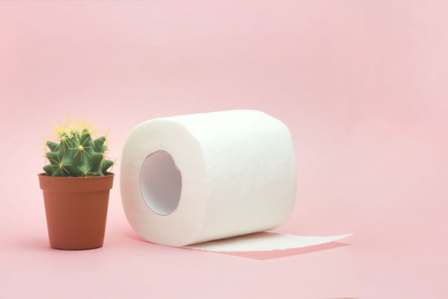 Hemorrhoid, constipation treatment health problems. Toilet paper an a cactus on the pink background. Hemorrhoid problems.