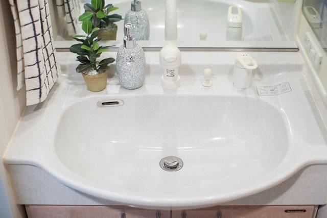 観葉植物のある洗面所