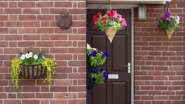 玄関の簡単なガーデニング