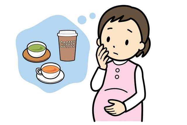 妊婦の飲み物への不安