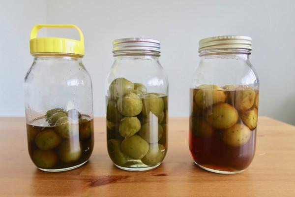 梅シロップ、3つの瓶