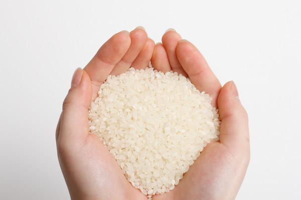 両手の平に米