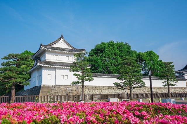 京都 二条城の東南隅櫓とサツキの花